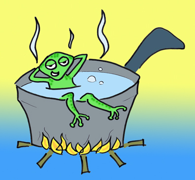 Frog simmering